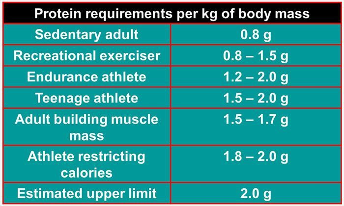 protein requirements for rugby players